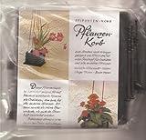Pflanzenkorb dunkelbraun Epiphyten-Korb zum Stellen oder Hängen