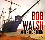 Songtexte von Bob Walsh - After the Storm
