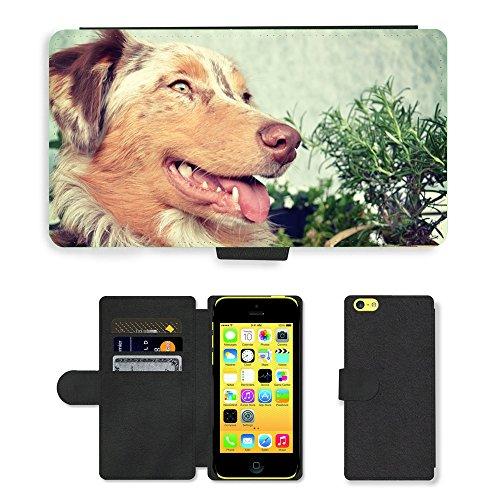 Just Mobile pour Hot Style Téléphone portable étui portefeuille en cuir PU avec fente pour carte//m00139241Berger Australien pour chien Berger//Apple iPhone 5C