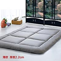 FUIOLWP colchón Tatami/colchón Fino del Ocio/colchón Plegable/otoño e Invierno colchón