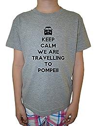 Keep Calm We Are Travelling To Pompeii Niño Niños Camiseta Cuello Redondo Gris Algodón Manga Corta Boys Kids T-shirt Grey
