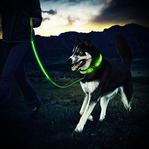 ZEWOO Leuchtendes Halsbänder + LED Hundeleine/Leine, U… | 00780150328246