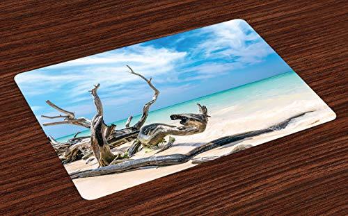 ABAKUHAUS Treibholz Platzmatten, Seelandschaft-Thema verzweigt Sich auf den sandigen Strand von Kuba und das Himmel-Bild, Untersetzer aus Waschbaren Stoff Tischdekoration mit Druck, Türkis Himmelblau -