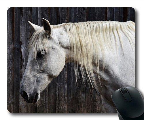 Pferderennen-Mausunterlage, Pferdekopf des Tieres, Pferdemausmatte