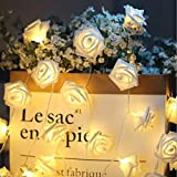 Rose Blume 30er LED-Lichterkette warm-weiß Innen Micro Draht Batterie-betrieben 9.8 Ft/3M von Hausger