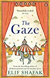 The Gaze (English Edition)