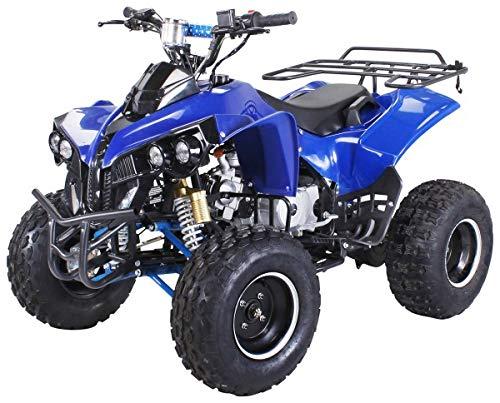 Kinder Quad S-10 125 cc Motor Miniquad Midiquad 125 ccm Warrior (Blau)