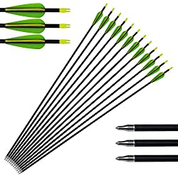 Tongtu Outdoor 12pack Archery Aluminium Arrows Hunting Compuesto Arco recurvo
