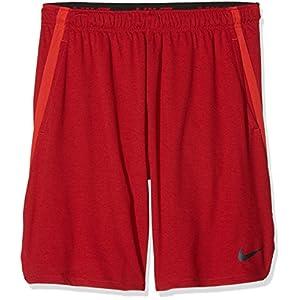 Nike Herren Shorts Dry 4.0