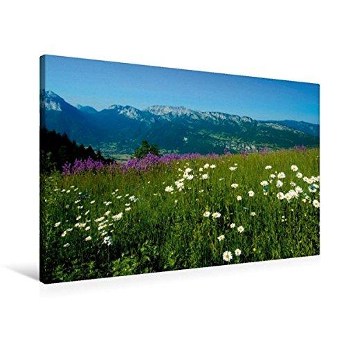 Preisvergleich Produktbild Premium Textil-Leinwand 90 cm x 60 cm quer, Alpenblühen am Col de Forclaz | Wandbild, Bild auf Keilrahmen, Fertigbild auf echter Leinwand, Leinwanddruck (CALVENDO Natur)