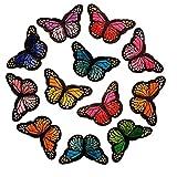 Naiocase Un Set 12 Pezzi Ricamo Farfalle Toppe termoadesive Fai da Te per Bambini Vestiti, Jeans, Cappello, Scarpe, Maglietta