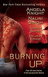 Burning Up (Psy/Changeling Series)
