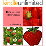 How to Grow Strawberries (How To Grow Fruit Book 2)