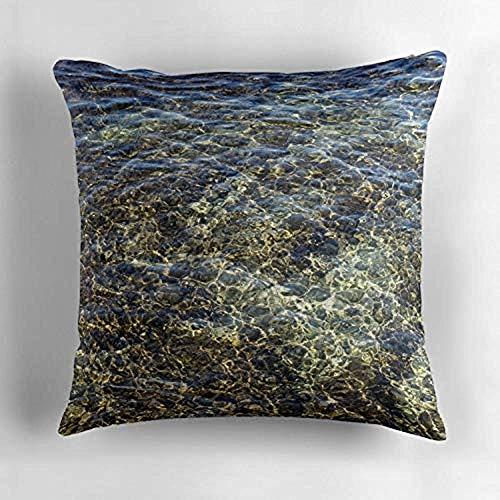 jonycm Cojines del sofá Whimsical Water Works Crystal Clear Earthtones Take One...