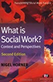 What is Social Work?: Context and Perspectives (Transforming Social Work Practice Series)