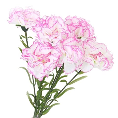 6 x Artificial Flowers Carnation Plants for Wedding Bouquet Decoration Table Arrangement (White and Purple)