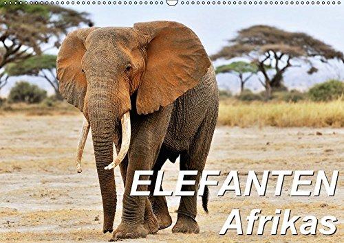 Elefanten Afrikas (Wandkalender 2017 DIN A2 quer): Die Dickhäuter Afrikas erscheinen mal...