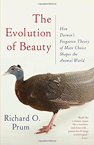 Download free evolution of beauty how darwin s forgotten theory of download free evolution of beauty how darwin s forgotten theory of mate choice shapes the animal world and us pdf free by richard o prum books fandeluxe Images