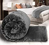Global Home Microfiber Soft Korean Floral Embossed Blankets for Double Bed, 86 X