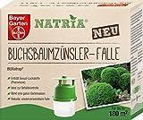 Bayer NATRIA Buchsbaumzünsler-Falle