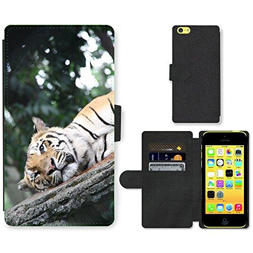 Just Mobile pour Hot Style Téléphone portable étui portefeuille en cuir PU avec fente pour carte//m00139467Tigre Sleepy Big Cat//Apple iPhone 5C