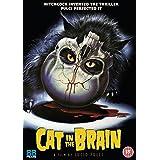 A Cat in the Brain