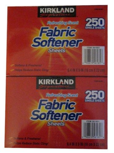 Kirkland Signature Premium - Toallitas suavizantes con fragancia fresca; 250 unidades (paquete de 2)