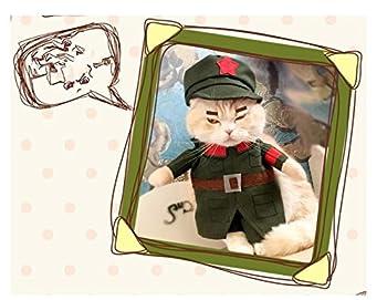 ZHJZ Vêtements pour Animaux de Compagnie Drôles policiers Militaires de la Police de Vêtements de Chat Taille 5 pour Chat Costume