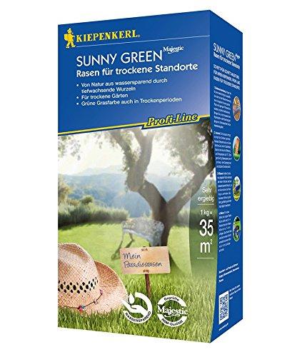 Rasensamen - Profi-Line Sunny Green - Rasen für trockene Standorte (10 kg) von Kiepenkerl