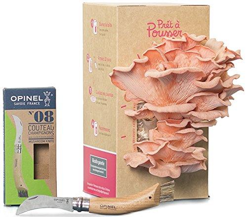 Coffret - Couteau à champignons (Opinel n°8) + Kit culture de...
