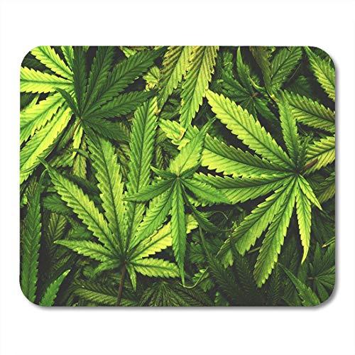 Vintage Flaches Blatt (Luancrop Mauspad Green Weed Cannabis Marihuana Blatt Haufen Flache Vintage Hanf Mousepad für Notebooks, Desktop-Computer Mauspads, Bürobedarf)