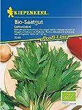 Liebstöckel Maggikraut Biosaatgut