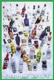 empireposter Vodka - chill out - Poster Foto Wodka Flaschen - Grösse 61x91,5 cm + Wechselrahmen der Marke Shinsuke® Maxi aus Kunststoff Grün - mit Acrylglas-Scheibe.