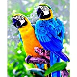 CKVVROOM 50X70Cm(20'X28'), DIY 5D Diamond Painting Full Kits,Colorful Animal Parrot...