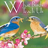 What Birds Teach Us