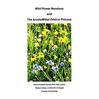 Wild Flower Meadows and The ArcelorMittal Orbit in Pictures (Argazki Albumak Book 18) (Basque Edition)