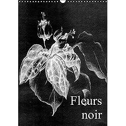Fleurs noir (Wandkalender 2019 DIN A3 hoch): Fleurs Noir - ist ein künstlerischer Streifzug mit Kreidestift auf koloriertem, leinenstrukturiertem ... (Monatskalender, 14 Seiten ) (CALVENDO Kunst)
