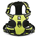 fiE FIT INTO EVERYWAY Front Range No Pull Dog Harness Outdoor Adventure 3M Reflective Pet Vest with Handle Adjustable Protective Nylon Walking Pet Harness Green M