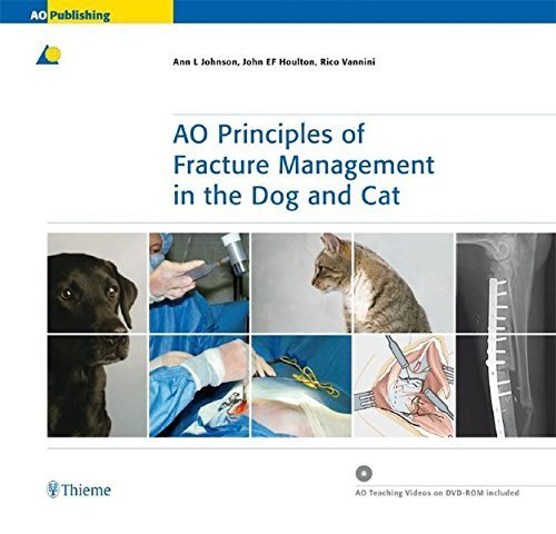 AO Principles of Fracture Management in the Dog and Cat by Ann L. Johnson (2005-05-25)