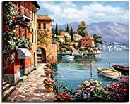 Framed Pictures DIY Painting By Numbers Home Decoration For Living Room DIY Digital Canvas Oil Painting 40x50c