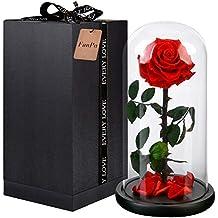 Amazon Fr Rose Eternelle Sous Cloche