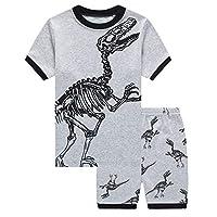Gorgeya Boys Pyjamas Short Sets Dinosaur Pjs for Boy Short Sleeved Nightwear Sleepwear Kids Summer Outfits 2 Pieces Age 1-7 Years (1-2 Years, Grey)