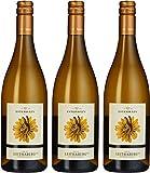Schlossweingut Esterházy Leithaberg Cuvée Blanc DAC 2013/2015, Burgenland, 3er Pack (3 x 750 ml)