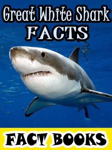 Great White Shark Facts: Shark Facts and Cool Pictures (Fact Books) (English Edition) (Coole Aquarien Und Aquarien)