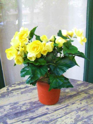 Künstliche Begonie, gelb, 2 Stück, sehr dekorativ