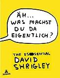 Äh. was machst du da eigentlich?: The Essential David Shrigley