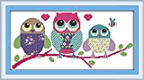 CaptainCrafts Hot New Releases Cross Stitch Kits Patterns Embroidery Kit - Cartoon Owl (STAMPED)