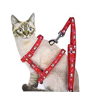 adjustable cute pet small cat kitten harness nylon rabbit/foot print lead leash set with buckle red (random patern) Adjustable Cute Pet Small Cat Kitten Harness Nylon Rabbit/Foot Print Lead Leash Set with Buckle Red (Random Patern) 51vyPoTFNmL