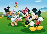 XXL Poster Fototapete Disney Mickey Mouse Donald Minnie 160x115cm