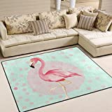 ingbags Super Weich Moderner Flamingo Polka Dot, ein Wohnzimmer Teppiche Teppich Schlafzimmer Teppich für Kinder Play massiv Home Decorator Boden Teppich und Teppiche 160x 121,9cm, multi, 63 x 48 Inch
